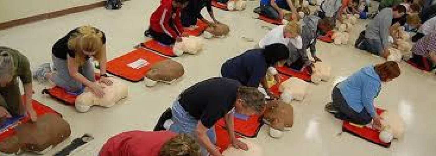 Bls Cpr First Aid And Acls Individual And Group Class Training